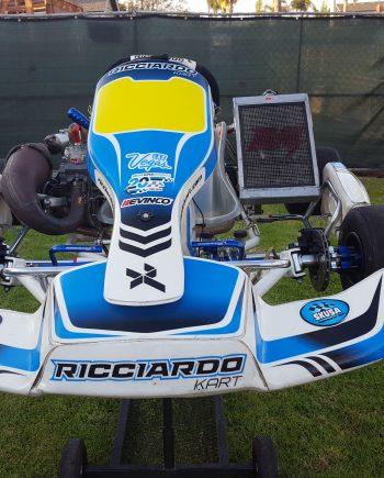 Ricciardo Shifter Kart